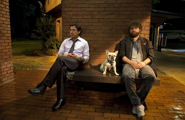 Robert Downey Jr.,Zach Galifianakis