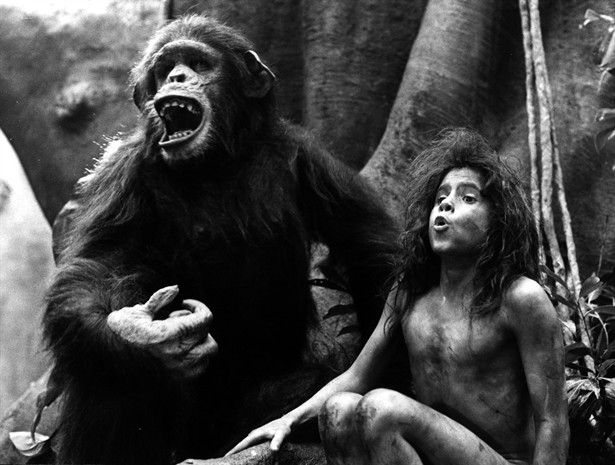 Greystoke The Legend Of Tarzan Lord Of The Apes The