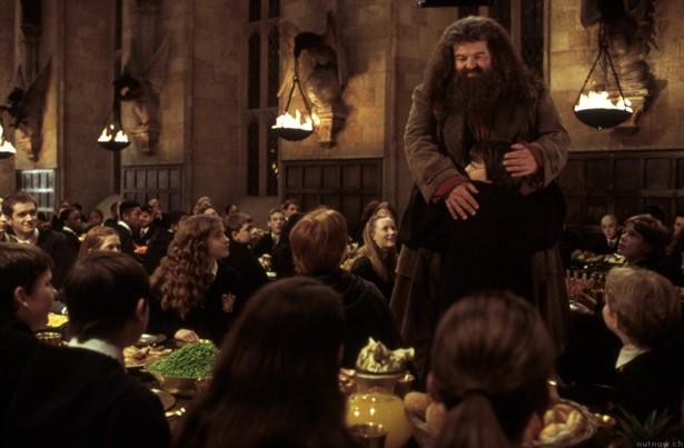Daniel Radcliffe,Emma Watson,Robbie Coltrane,Rupert Grint