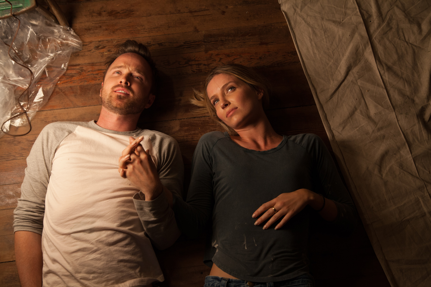 Annabelle Wallis, Aaron Paul